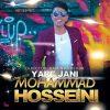 دانلود آهنگ افغانی محمد حسینی به نام یار جانی