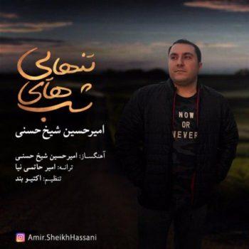 امیرحسین شیخ حسنی شبهاى تنهایى