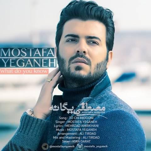موزیک ویدیو مصطفی یگانه تو چه میدونی