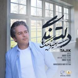 آهنگ امیر تاجیک دلتنگی
