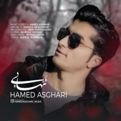 آهنگ حامد اصغری تنهایی