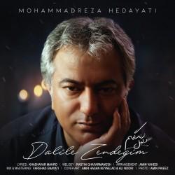 آهنگ محمدرضا هدایتی دلیل زندگیم