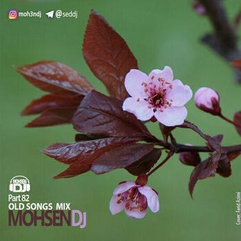 ریمیکس محسن دی جی تاپ میکس