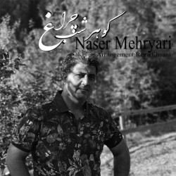 آهنگ ناصر مهریاری گوهر شب چراغ