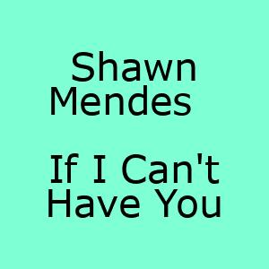 آهنگ جدید If I Can't Have You Shawn Mendes