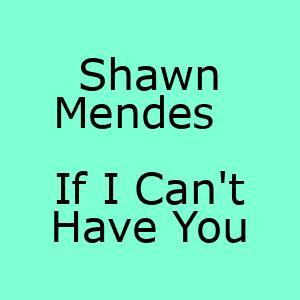 آهنگ جدید If I Can't Have You Shawn Mendes