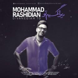 آهنگ محمد رشیدیان دیوانگیم تو