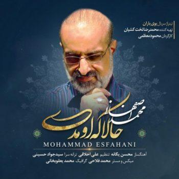 آهنگ محمد اصفهانی حالا که اومدی