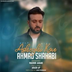 آهنگ احمد شهابی عاشقی کن
