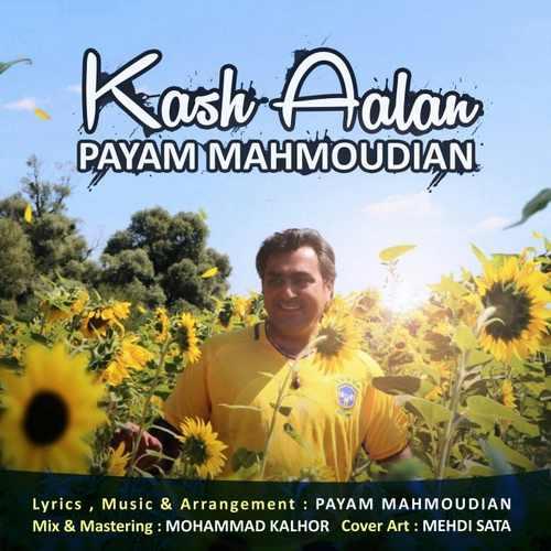 دانلود آهنگ جدید شاد پیام محمودیان بنام کاش الان